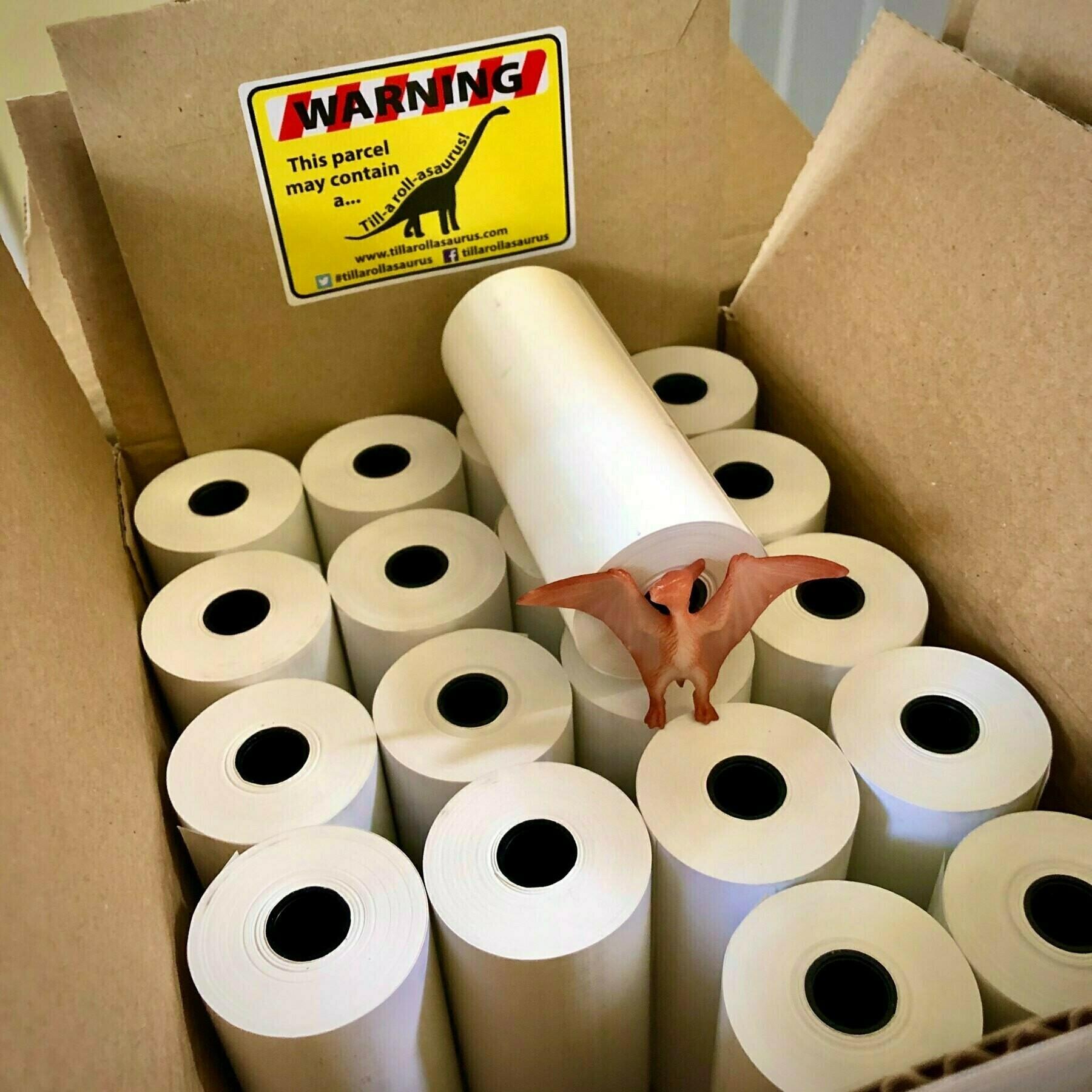 cardboard box full of till rolls and a plastic dinosaur toy